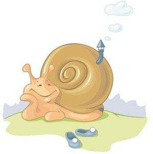 Die Quelle dieses Bildes ist: https://static.tv-forum.info/snail-2_p.jpg
